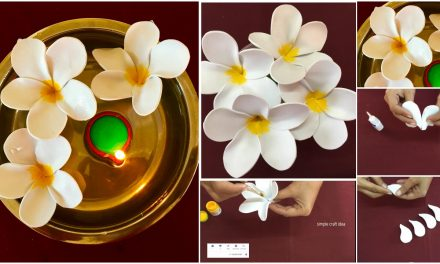 How to make a tropical flower