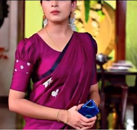 Beautiful Sari Blouse Design