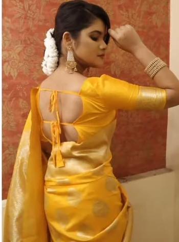 Dori Blouse back neck Designs
